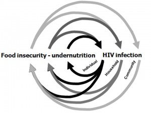 2008_HIV malnutrition cycle